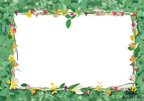 Floral Frame - cutouts 7 | Рамки - вырезы с цветами и листьями 7