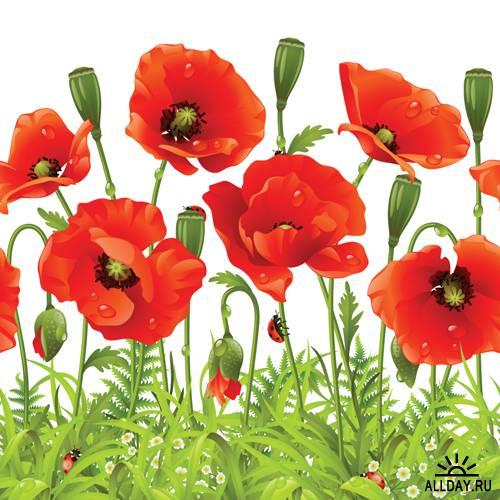 Цветочные векторные паттерны | Flower Patterns - Stock Vectors