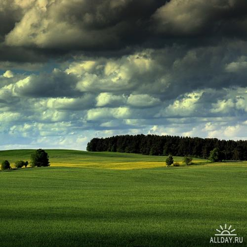 Мир в Фотографии - World In Photo 82