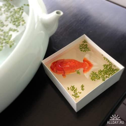 художника Keng Lye