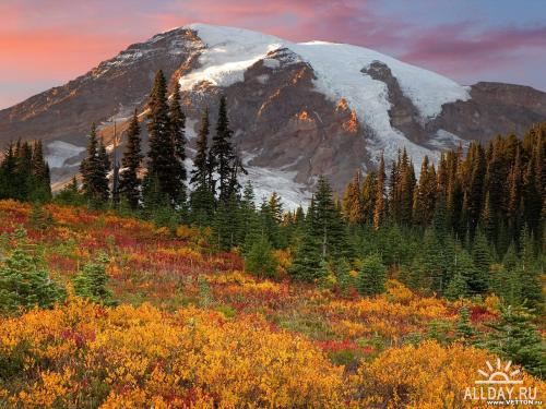 Nature Wallpapers (part 78)
