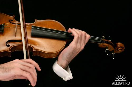 Musical Instruments - Violin | Музыкальные инструменты - скрипка