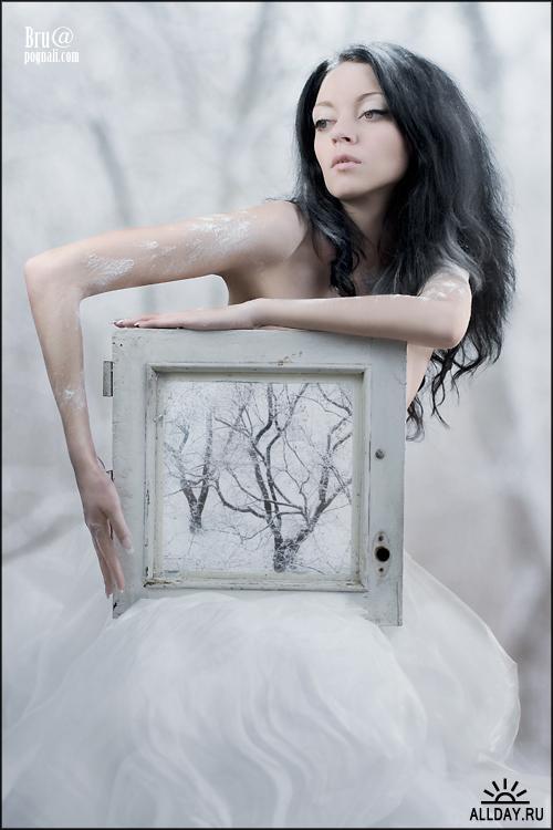 model ARINA