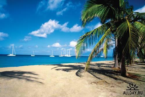 MedioImages WT24 Discover Beachcomber