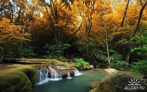 Великолепные обои пейзажа,  картинки природы