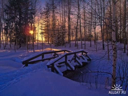 Мир в Фотографии - World In Photo 469
