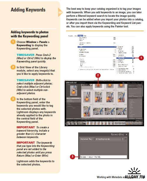 Adobe Lightroom 3 on Demand