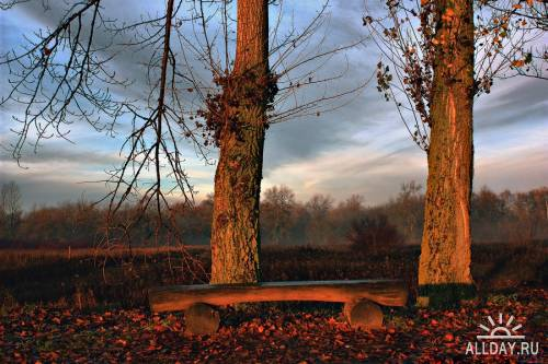 Мир в Фотографии - World In Photo 382