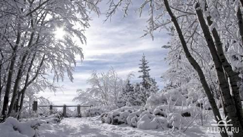 Подборка фото красивой зимней природы 2