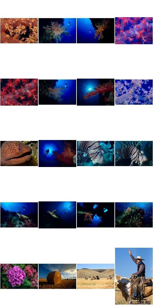ImageBroker | IB-033 | Varios HQ Images