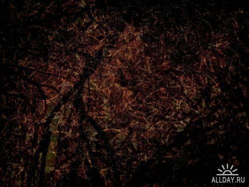 Текстуры - Осенняя пора
