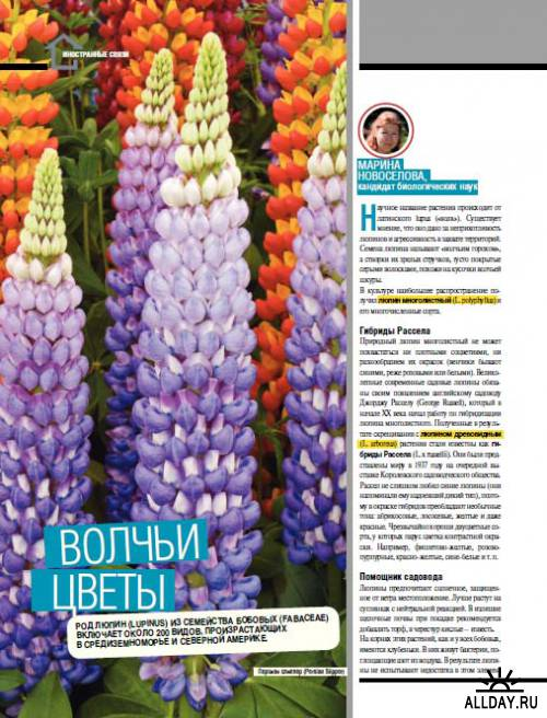 Подшивка журнала