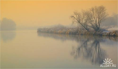Мир в Фотографии - World In Photo 590