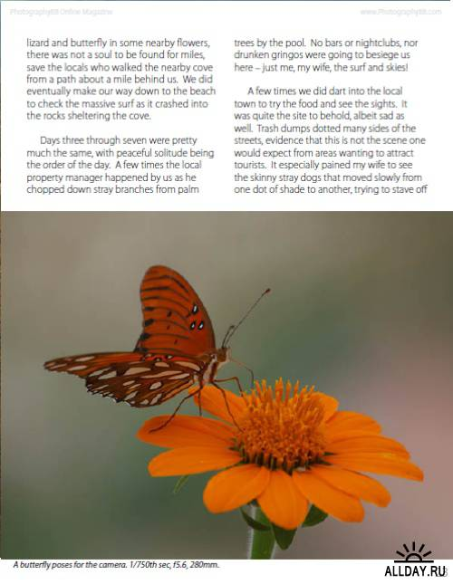 PhotographyBB Online Magazine #40 - May 2011