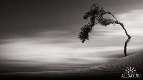 Чёрно-белое портфолио - Kevin Saintgrey