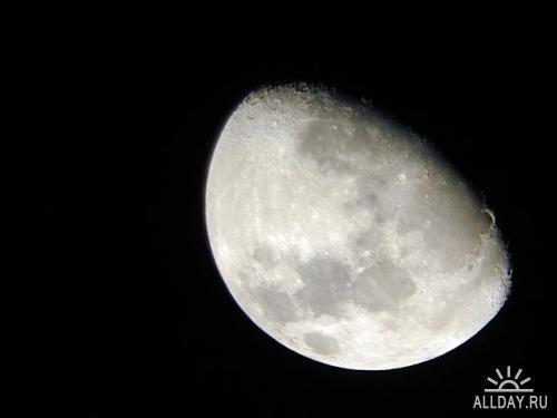 Луна в разных фазах