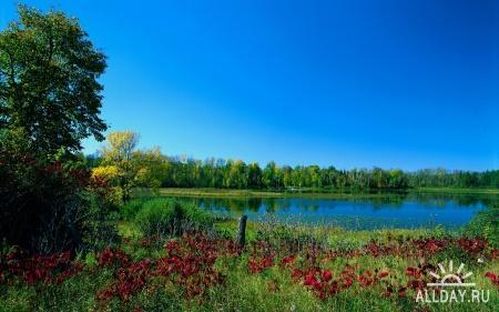 Nature WideScreen Wallpapers 67