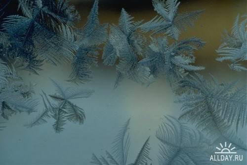 Фотосток – Морозные узоры 2
