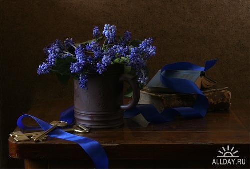 Работы фотографа Иры Быковой (P3) - Натюрморт   Still Lifes