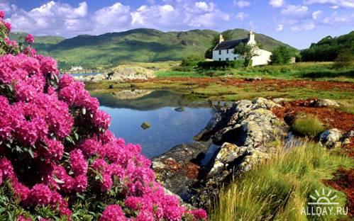 Великолепные красоты природы № 104