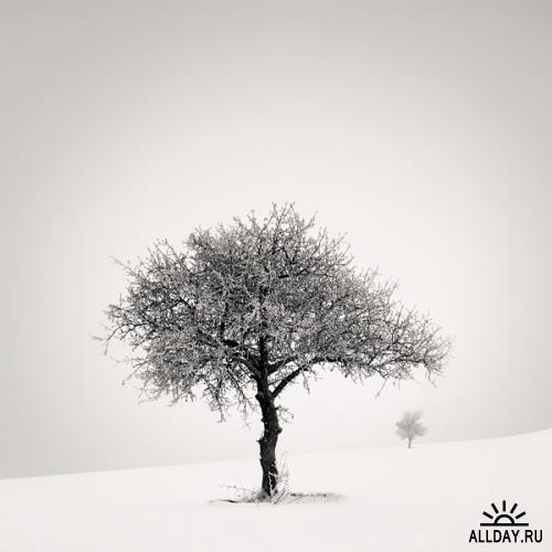 Новые работы фотографа Ebru Sidar