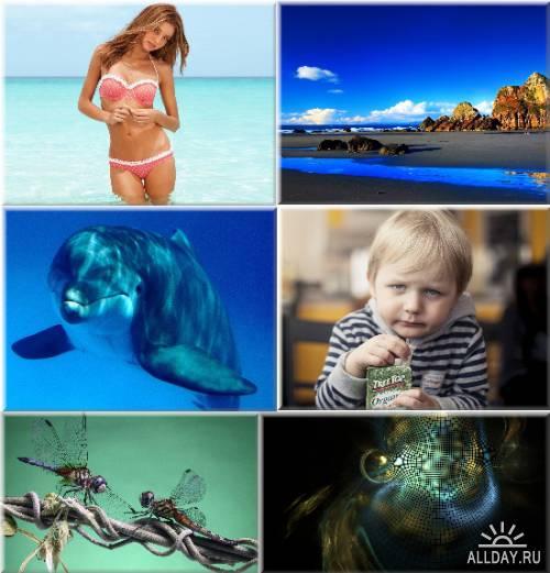 Обои - Новые качественные изображения