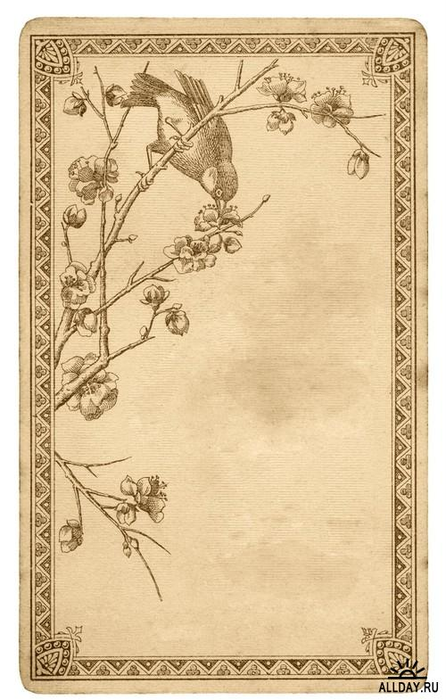 Old paper texture 2