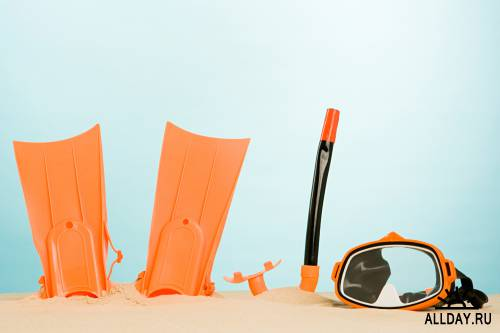 Photostock - Holiday Essentials