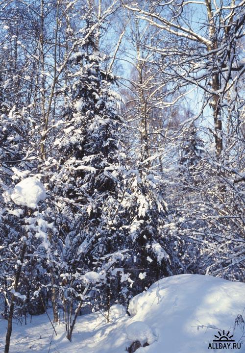 IZ088 Winter | Зима