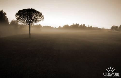 Финские пейзажи Микко Лагерстедта