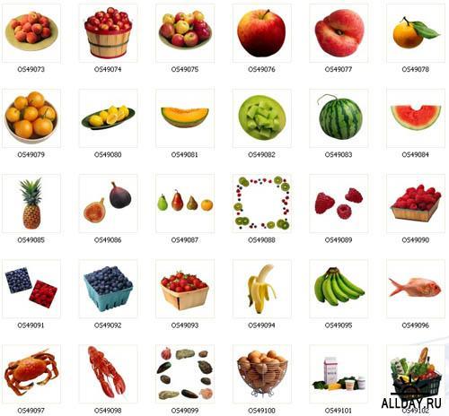 Food - Photostock