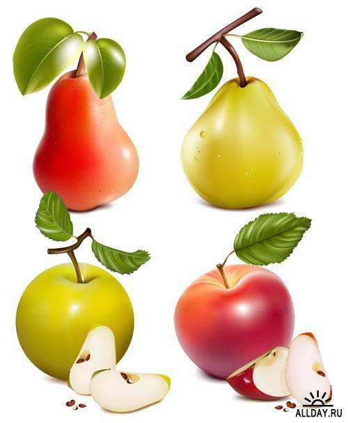 Фрукты с зелеными листьями | Fruit with green leaves