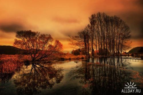 Мир в Фотографии - World In Photo 49