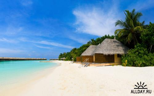 40 Amazing Holiday Beach