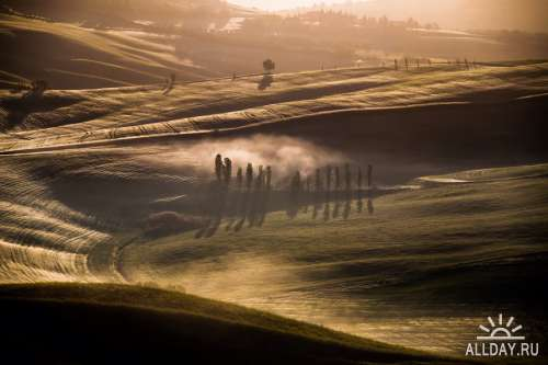 Мир в Фотографии - World In Photo 973