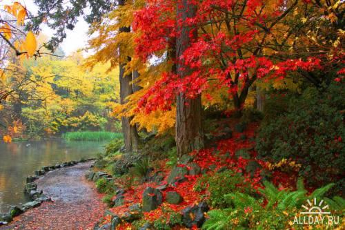 Мир в Фотографии - World In Photo 598