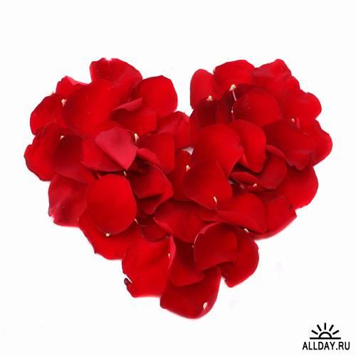 Фотосток: цветочное сердце