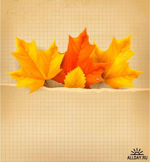 Векторный клипарт - Осень 6