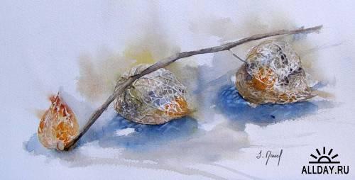 Французская акварелистка Josette Marrel