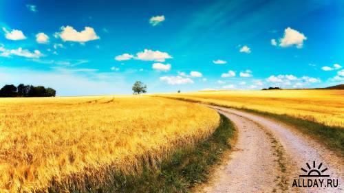 Совершенство природы на фото и картинках