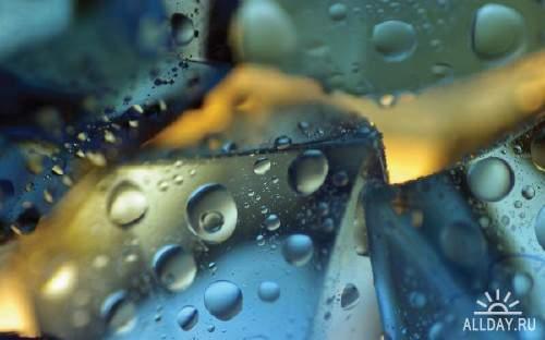 Макро фотографии для украшения фона рабочего стола 28