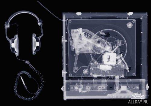 X-Rays - высококачественный клипарт