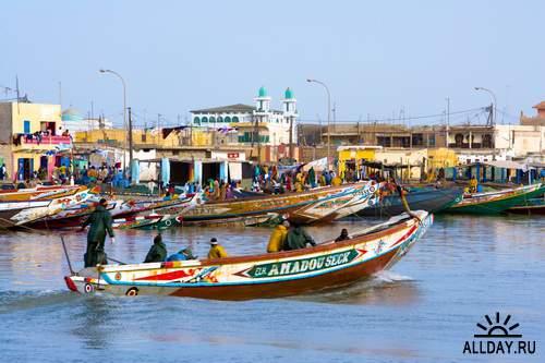 Клипарт - Сенегал / AUI-118 Senegal