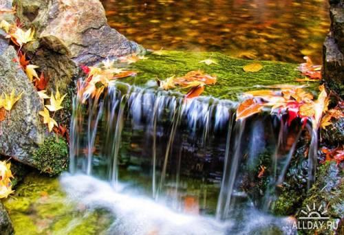 Мир в Фотографии - World In Photo 391
