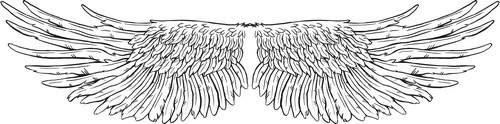 Birds wings graphics | Крылья - Набор графических элементов дизайна для коллажей