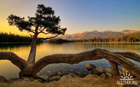Nature WideScreen Wallpapers 47