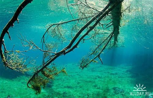 Прекрасное Зеленое озеро