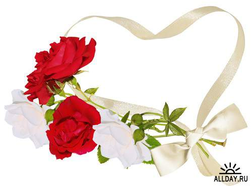 Мир Алой и Белой Розы - красные и белые розы, композиции с розами