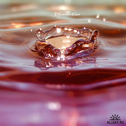 Works by ovidiupop. Milk&Water Drops