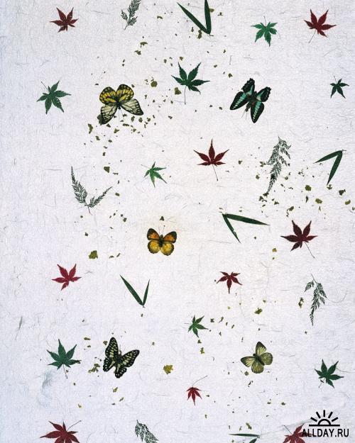 Mixa - MX-056 Japanese Paper Variation